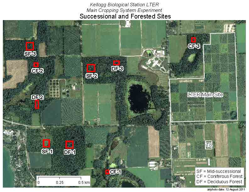 MCSE Forest and Successional Sites