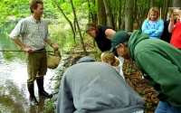 KBS LTER researcher Steve Hamilton shows K-12 partnership teachers how to sample invertebrates in wetlands; Photo Credit: T.Getty, Michigan State University