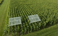Aerial view of rainout shelters on the KBS LTER site; the shelters are used to test crop response to reduced rainfall; Photo Credit: K.Stepnitz, Michigan State University