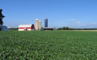 Soybean field and farmstead near the KBS LTER; Photo Credit: GP Robertson, Michigan State University