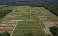 Photo of the KBS LTER/GLBRC Biofuels Cropping System Experiment in Michigan, taken by an unmanned aerial vehicle (UAV) that is used for research purposes. Photo credit: Ryan Mater