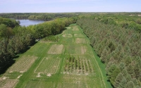 Photo of the KBS LTER/GLBRC biofuels research at Lux Arbor, MI, taken by an unmanned aerial vehicle (UAV) that is used for research purposes. Photo credit: Ryan Mater.