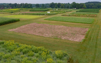 Aerial view of the GLBRC / KBS LTER cellulosic biofuels research experiment; Photo Credit: Kurt Stepnitz