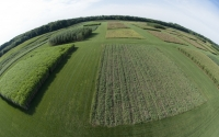 Aerial view of the GLBRC / KBS LTER cellulosic biofuels research experiment; Photo Credit: K.Stepnitz, Michigan State University