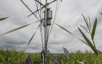A carbon dioxide eddy flux tower at one of the GLBRC / KBS LTER sites measures the net amount of CO2 captured by the ecosystem; Photo Credit: K.Stepnitz, Michigan State University