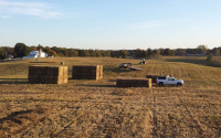 Bales of switchgrass from the KBS LTER / GLBRC biofuels experiment waiting to be transported to MSU's Power Plant; Photo Credit: D. Pennington