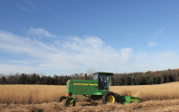 Harvesting the prairie biofuel plots in mid December, part of the KBS / GLBRC cellulosic biofuels experiment. Photo credit: J.E. Doll