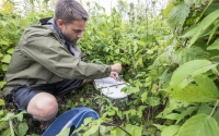 Research technician Matt Dornan collecting greenhouse gas samples in the early successional field plots of the KBS LTER/GLBRC Biofuels research program, Photo Credit: K. Stepnitz, Michigan State University