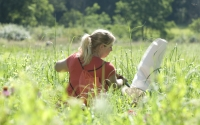 Undergraduate research intern Caitlin Kempski collects insect samples on restored grassland, part of the KBS LTER biofuels research program; Photo Credit: K.Stepnitz, Michigan State University