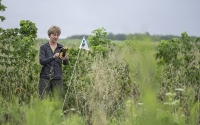 Database manager and GIS specialist, Suzanne Sippel, recording station flag GPS coordinates on the KBS GLBRC Biofuel Cropping System Experiment.; Photo Credit: K. Stepnitz, Michigan State University