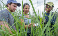 Carolina Cordova and others studying greenhouse gas emissions at the GLBRC