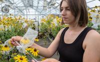 Ally Brown working in the greenhouse
