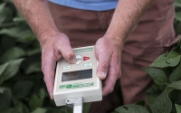 A field technician takes Photosynthetically Active Radiation readings in soybeans on the KBS GLBRC biofuels experiment; Photo Credit: K. Stepnitz, Michigan State University