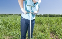 Researcher Poonam Jasrotia collects soil cores on the KBS LTER biofuels research experiment; Photo Credit: K.Stepnitz, Michigan State University