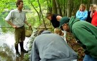 KBS LTER researcher Steve Hamilton shows K-12 partnership teachers how to sample invertebrates in wetlands; Photo Credit: T.Getty, Michigan State University