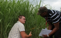 Extension educator Dennis Pennington makes a point about Miscanthus during a KBS LTER international biofuel course; Photo Credit: J.E.Doll, Michigan State University