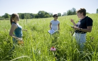 KBS LTER researcher Kay Gross explains plant sampling techniques to undergraduate students in the field; Photo Credit: K.Stepnitz, Michigan State University