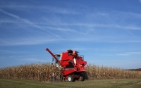 Corn harvest using a plot combine that measures yield precisely from the GLBRC / KBS LTER biofuels research site; Photo Credit: J.E.Doll, Michigan State University