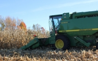 Corn harvest on the KBS LTER biofuels research sitePhoto Credit: P.Jasrotia, Michigan State University