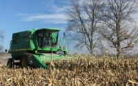 Corn harvest on the KBS LTER Main Cropping System Experiment: J.E.Doll, Michigan State University