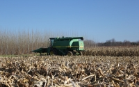 Corn harvest on the KBS LTER Main Cropping System Experiment; Photo Credit: J.E.Doll, Michigan State University