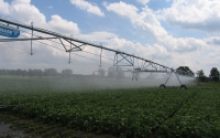 Irrigating soybeans on the KBS LTER Resource Gradient Experiment; Photo Credit: J.E.Doll, Michigan State University