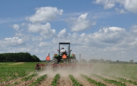 Cultivating organic soybeans to control weeds in the KBS LTER Main Cropping System Experiment; Photo Credit: J.E.Doll, Michigan State University