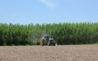 Planting soybeans on the KBS LTER Main Cropping System Experiment in late May; Photo Credit: J.E. Doll, Michigan State University