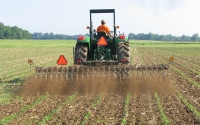 Controlling weeds in organic soybeans with a rotary hoe on the KBS LTER Main Cropping System Experiment; Photo Credit: J.E.Doll, Michigan State University