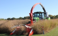 A plot combine harvests switchgrass on the KBS LTER / GLBRC biofuels experiment in early October; Photo Credit: J.E. Doll, Michigan State University