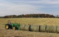 Bales of switchgrass on a GLBRC / KBS LTER biofuels scale-up site are gathered for transport; Photo Credit: J.E.Doll, Michigan State University
