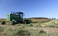 October switchgrass harvest from a GLBRC / KBS LTER biofuels research experiment; Photo Credit: J.E.Doll, Michigan State University