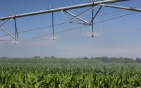 Irrigating corn on the KBS LTER Resource Gradient Experiment; Photo Credit: J.E.Doll, Michigan State University