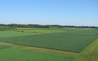 Aerial view of the KBS LTER Main Cropping System Experiment; Photo Credit: KBS LTER