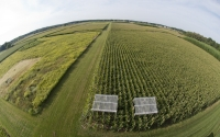 Aerial view of rainout shelters on the KBS LTER testing how crops respond to reduced levels of precipitation; Photo Credit: K.Stepnitz, Michigan State University