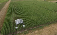 Rainout shelter in corn on the LTER Main Cropping Systems Experiment, taken by an unmanned aerial vehicle (UAV) that is used for research purposes. Photo credit: Ryan Mater