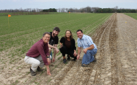 Establishing new prairie strips in April 2019