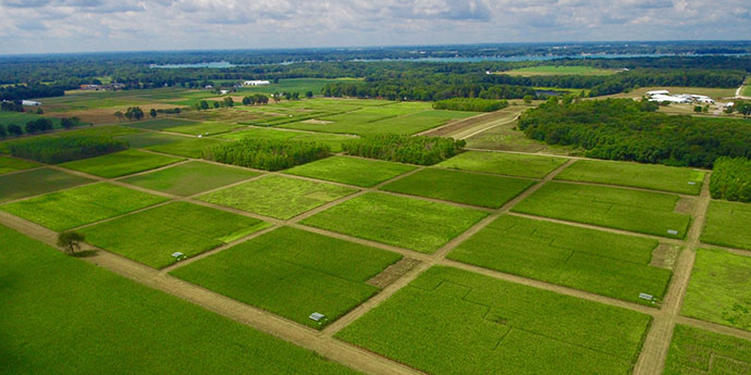 An aerial view of the KBS LTER Main Cropping Systems Experiment in June; resilience in agricultural ecosystems
