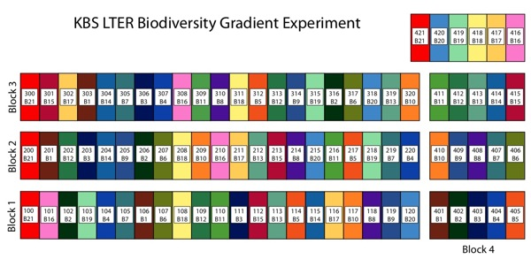 Biodiversity Gradient Experiment