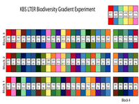 Biodiversity Gradient