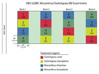 Miscanthus EBI Expt