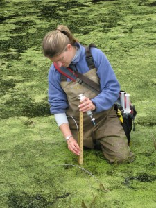 Weland Water Sample Collection