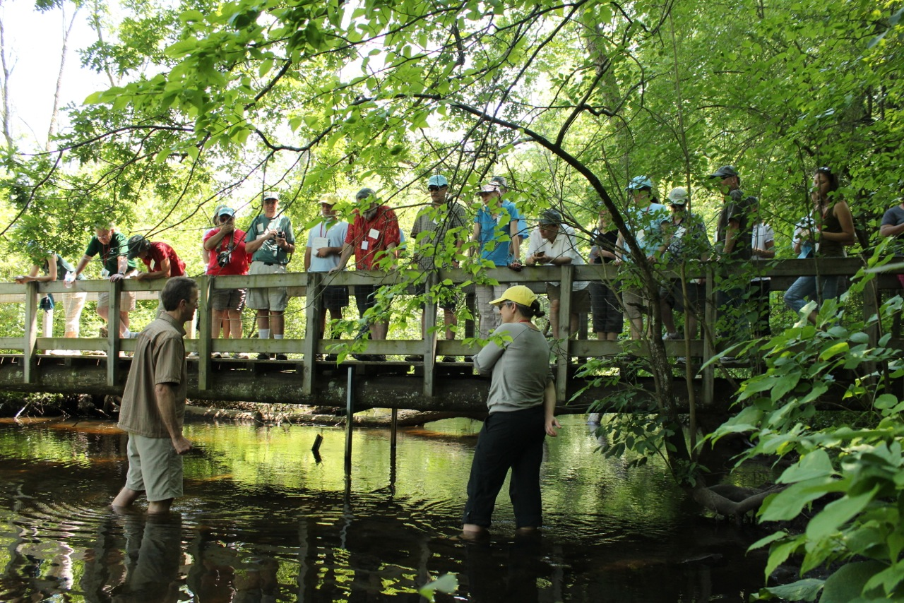 Journalists and scientists learn about climate change research on a trout stream near MSU's Kellogg Biological Station.