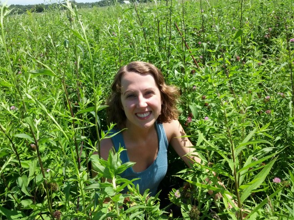 REU Caitlyn Byron getting ready to count seedlings in one of the old field plots at the KBS LTER. (Photo credit: Tim Dickson)