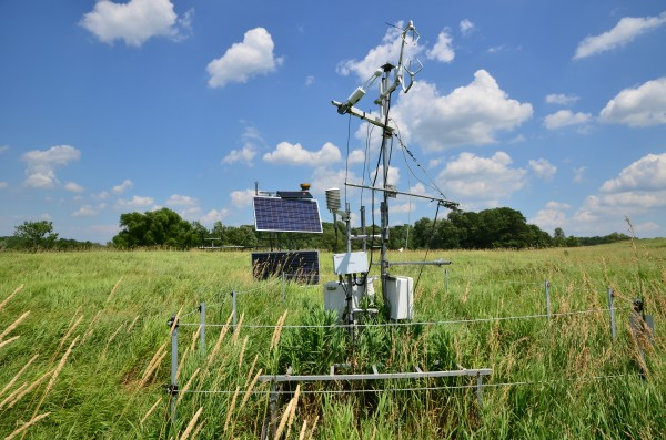 One of seven carbon dioxide flux towers at MSU's Kellogg Biological Station that help scientists assess the sustainability of biofuel cropping systems. Photo credit: Bill Krasean.