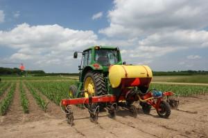Nitrogen fertilizer application to corn on the KBS LTER Resource Gradient Experiment; Photo Credit: J.E.Doll, Michigan State University