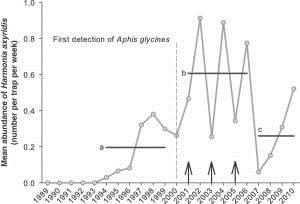 Line Graph showing Mean abundance of Harmonia axyridis