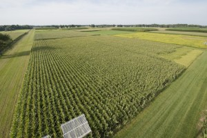 Aerial view the KBS LTER Main Cropping System Experiment in late August; Photo Credit: K.Stepnitz, Michigan State University