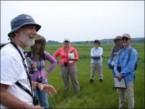 "Robert Buchsbaum, from Mass Audubon, preparing his team for a morning of salt marsh bird surveys. Find out more about his research on the endangered Saltmarsh Sparrow in his Data Nugget, ""Does Sea Level Rise Harm Saltmarsh Sparrows?"""