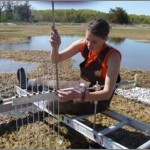 "Researcher Sam Bond taking Sediment Elevation Table measurements in Plum Island Ecosystems Long Term Ecological Research site. For more information on this research, check out Anne Giblin's Data Nugget, ""Keeping Up With the Sea Level"" here."